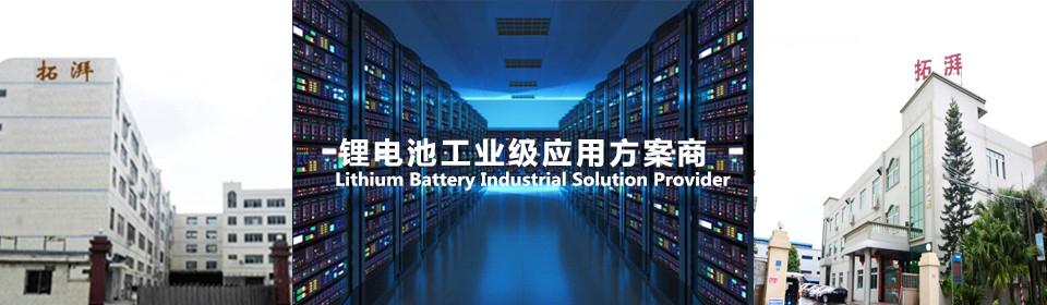 Company Profile-Shenzhen topak new energy technology CO.LTD.